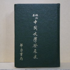 교정본 중국문학발전사 (校訂本 中國文學發展史)
