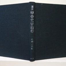 전대 갑골문자정화 (展大 甲骨文字精華)
