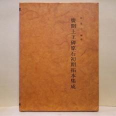 광개토왕비원석초기탁본집성 (廣開土王碑原石初期拓本集成)